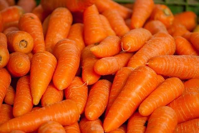 Владимир Путин: цены на морковь и картофель выросли, потому что их привозят из-за границы