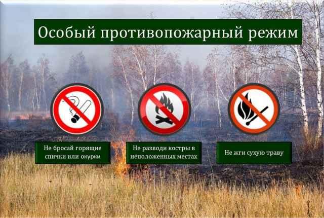 В Новгородской области введён особый противопожарный режим и сохраняется четвёртый класс пожарной опасности