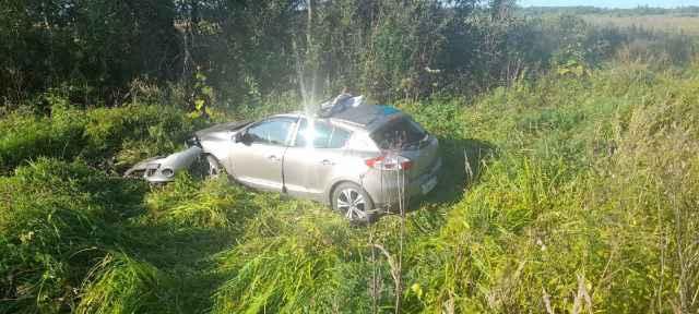 Машина двигалась в сторону Шимска, когда на проезжую часть выбежал лось.