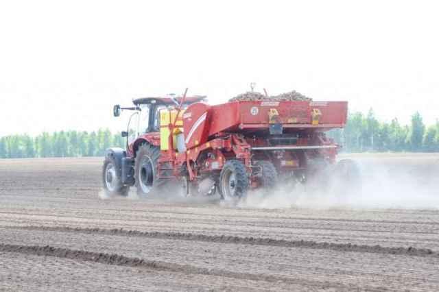 Субсидии на прирост производства овощей открытого грунта составили 3,9 млн рублей.