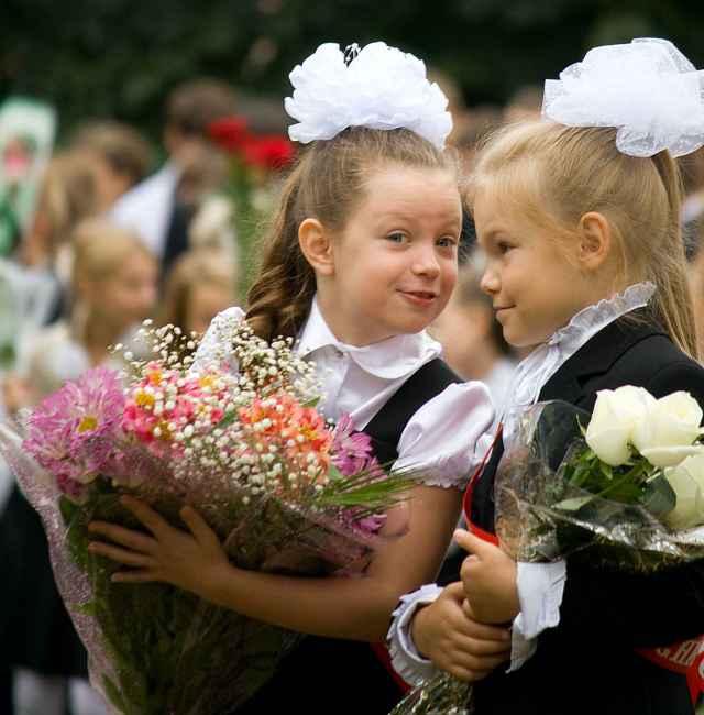 В Новгородской области впервые за парты сядут 7248 мальчишек и девчонок.