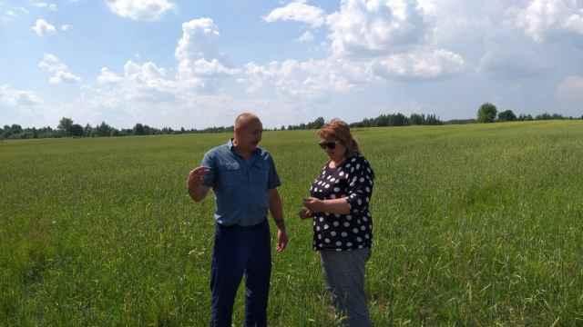 Олег Юхнов делится своими расчётами по выращиванию зерна с руководителем регионального минсельхоза Еленой Покровской.