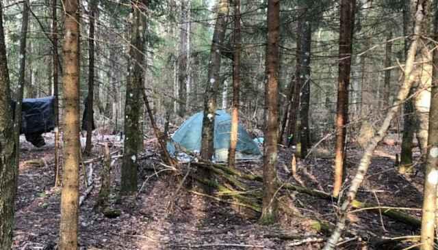 В основном злоумышленник похищал продукты, одежду, бытовую технику небольшого размера, инструменты и различные вещи, необходимые для выживания в лесу.