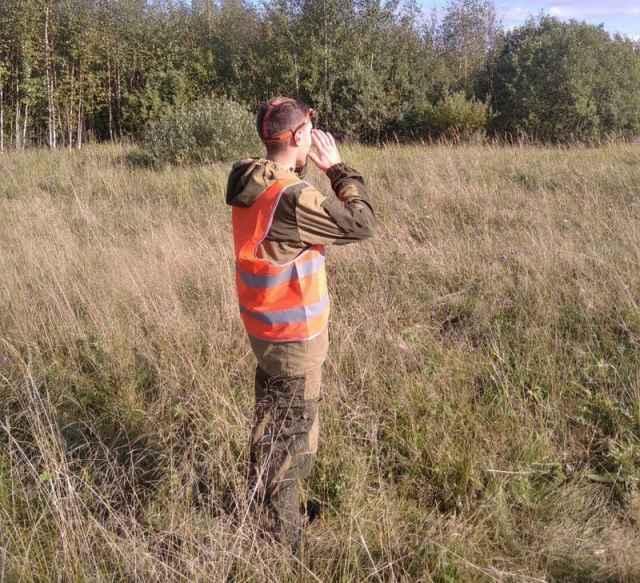 Поиски ещё одного заблудившегося в лесу жителя региона продолжаются.