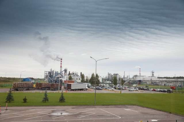 Компания «ИКЕА Индастри Новгород» отметила 15-летие с запуска завода ДСП