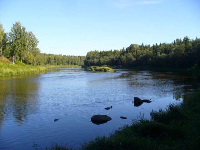 «Водо-сбытовая компания» получила предупреждение за сброс в реки недостаточно очищенных сточных вод.