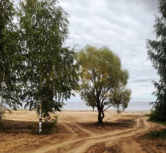 В первый этап вошли культуртехнические работы на территории береговой полосы, расчистка зоны пляжа от кустарника и мелколесья, планировка земельных участков под парковку, торговлю.
