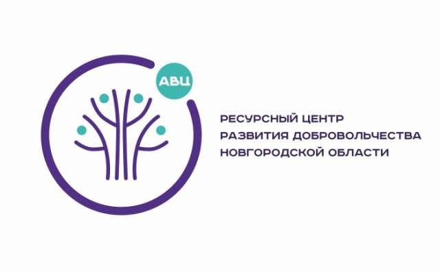 В конкурсе было заявлено 833 участника из разных регионов в номинации «Волонтёрские центры». В финале за победу боролся 31 проект.