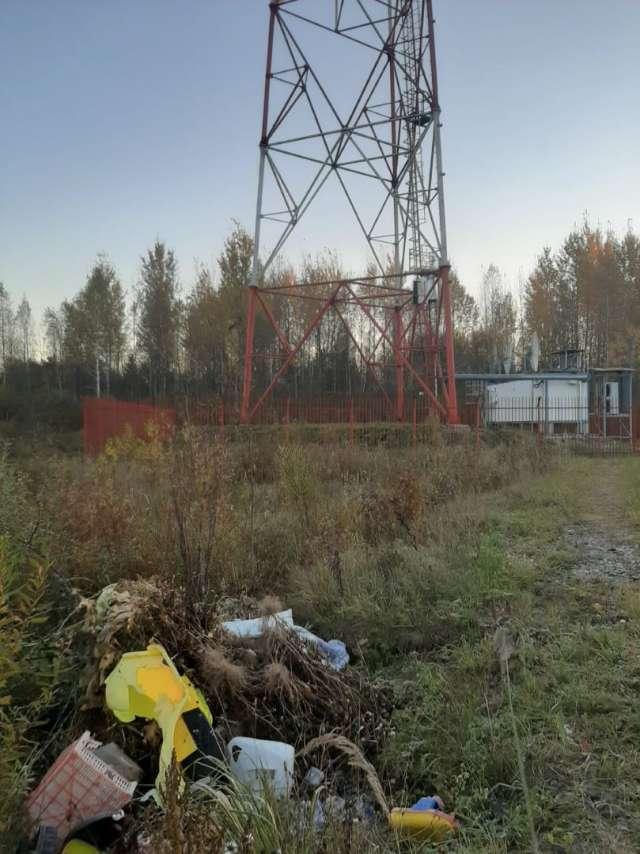 Несанкционированную свалку на улице Октябрьской в Холме обнаружила волонтёр Ирина Ситник.