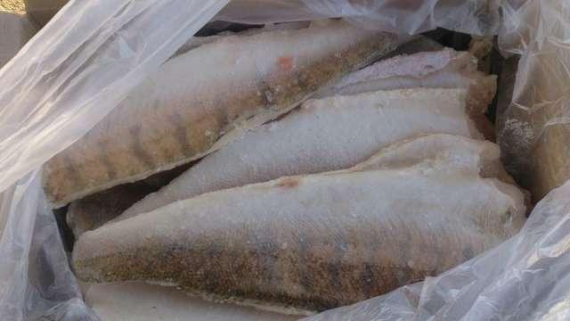 В Россельхознадзоре проверило рыбу на соответствие ветеринарно-санитарным требованиям США.