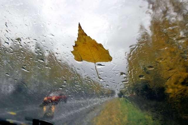 Неблагоприятная погода в регионе сохранится до пятницы